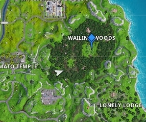 WW4 - Wailing Woods