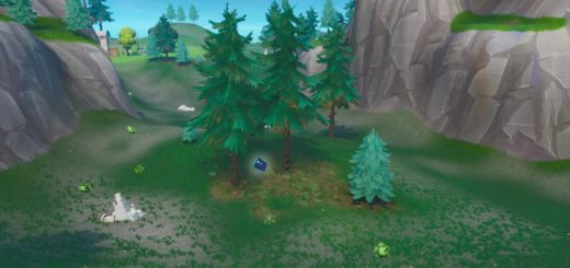Found Somewhere Between Haunted Hills And Pleasant Park Location Guide